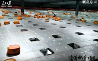 video: Robots sorting system helps