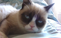 Kids React: Grumpy Cat